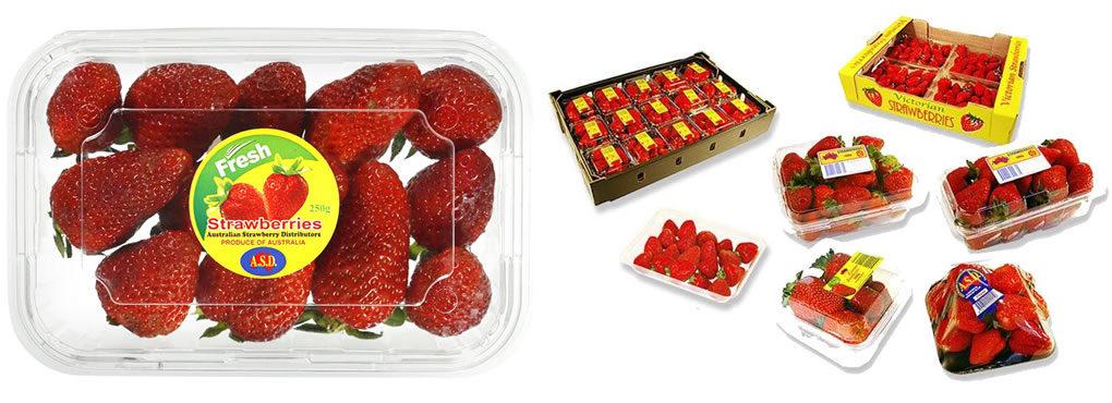 Products | Australian Strawberry Distributors